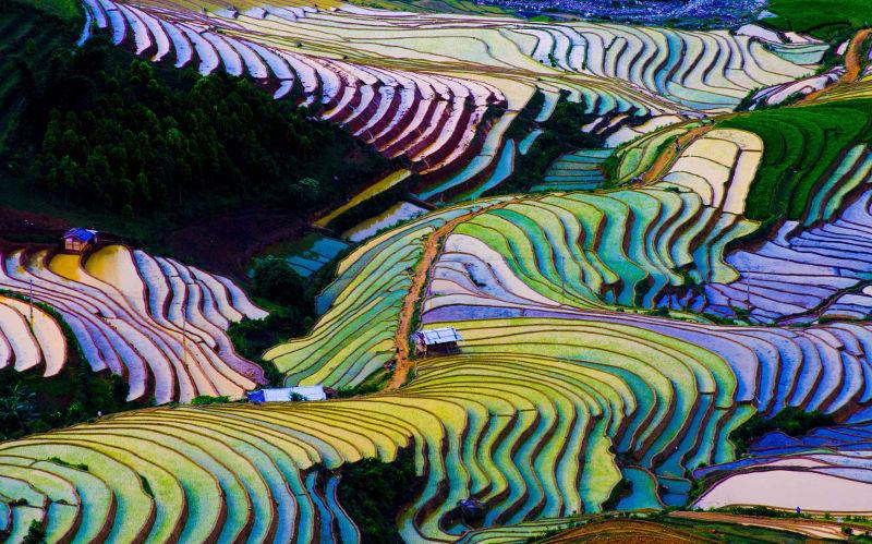 Die PVS-MEFA Reiss GmbH kompensiert seine Geschäftsreisen über atmosfair